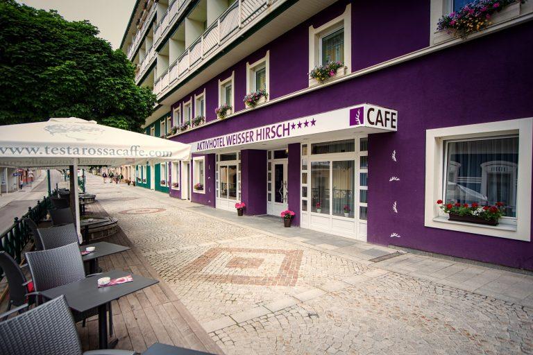 Aussenaufnahme Eingang Terrasse (c) AKTIVHOTEL Weisser Hirsch